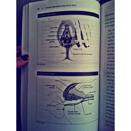 ejacbook3