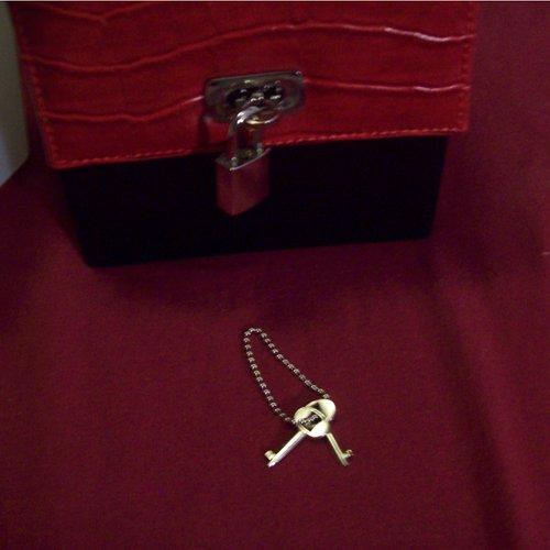 Devine Toy Box Lock & Keys