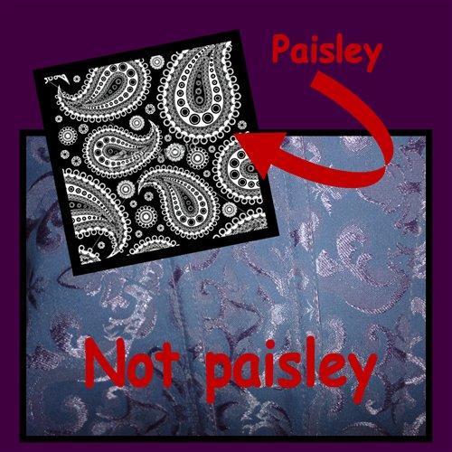 paisley, not paisley